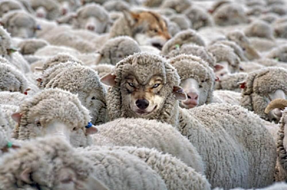 """Eles estão entre nós: como identificar os """"hereges"""" na igreja?"""